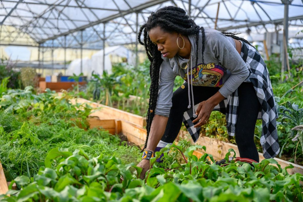 farming-for-changing